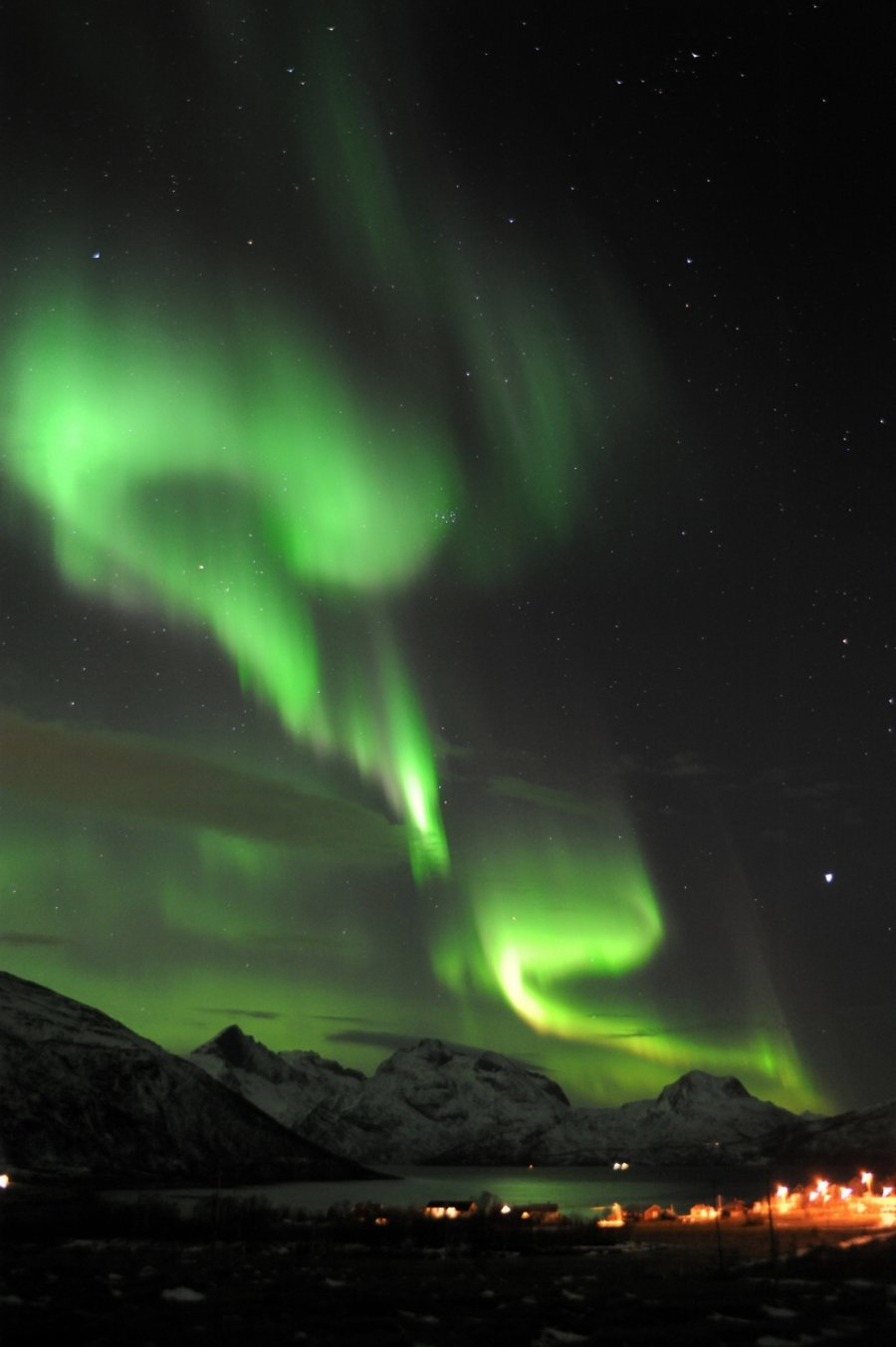 Why not to book Northern Lights tours ?